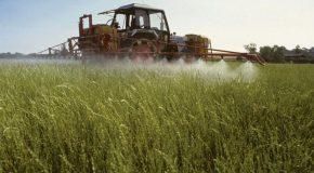 Loi Agriculture et alimentation