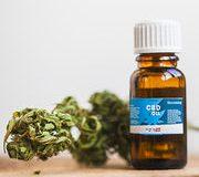 Vente de produits extraits du cannabis – Ce que l'on sait des effets du cannabidiol (CBD)