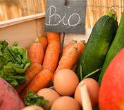 Alimentation bio – Moins de risque de cancer